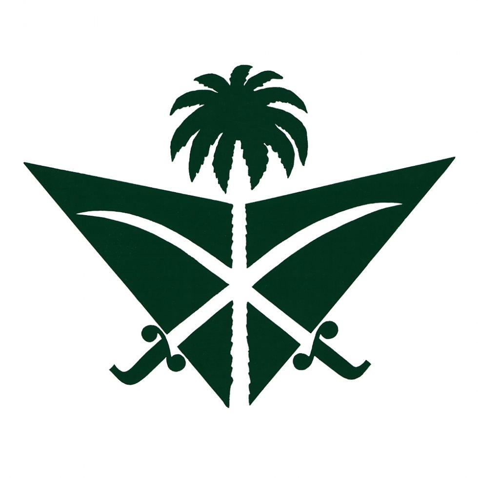Pan Am Saudi Air